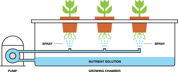 What Is Aeroponics Aeroponic And Hydroponic Systems