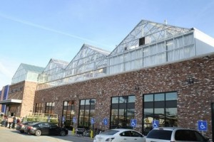 Rooftop greenhouse . Solution for open land in big cities