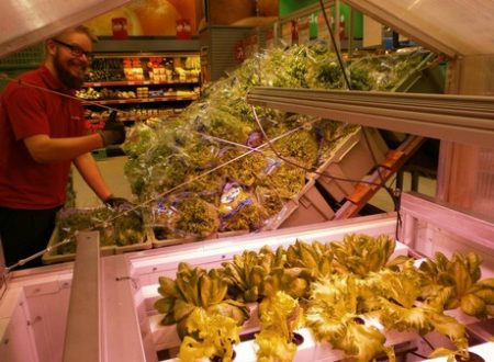 Finnish grower installs demo greenhouse in grocery store
