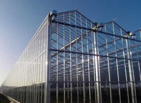 The Ideal Greenhouse