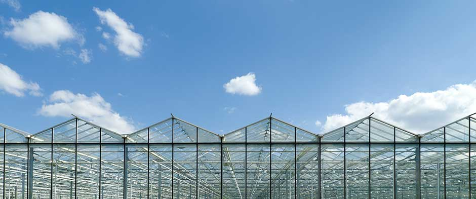 MORE LIGHT, MORE RESISTANCE, MORE VOLUME For all your projects of protected crops