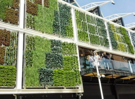The Global Vertical Farming Market is estimated at $1.15 billion in 2015 and is poised to reach $6.31 billion by 2022, growing at a CAGR of 27.5%